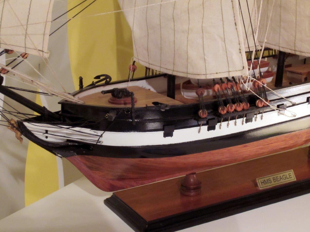 1824-10709-HMS-Beagle-Model-Ship-Standard-Range